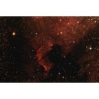NGC 7000 - The North America Nebula